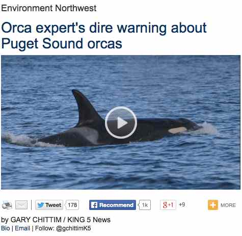 orca.news.story.king5