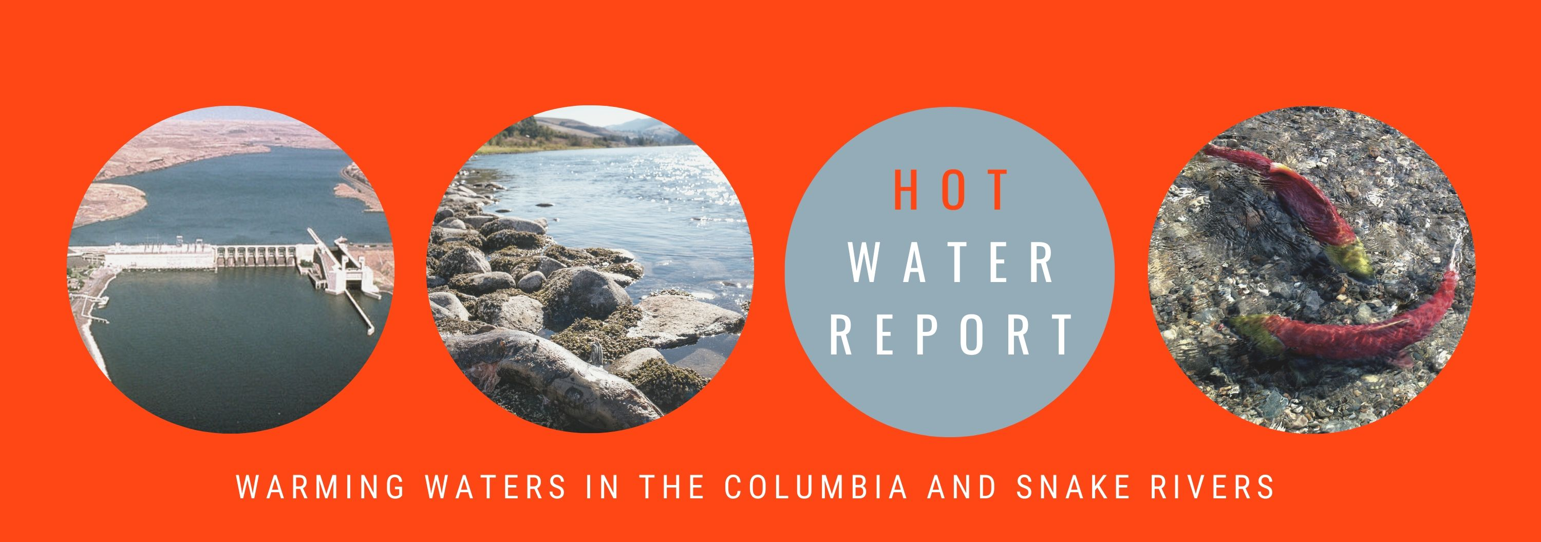 Hot Water Report 1