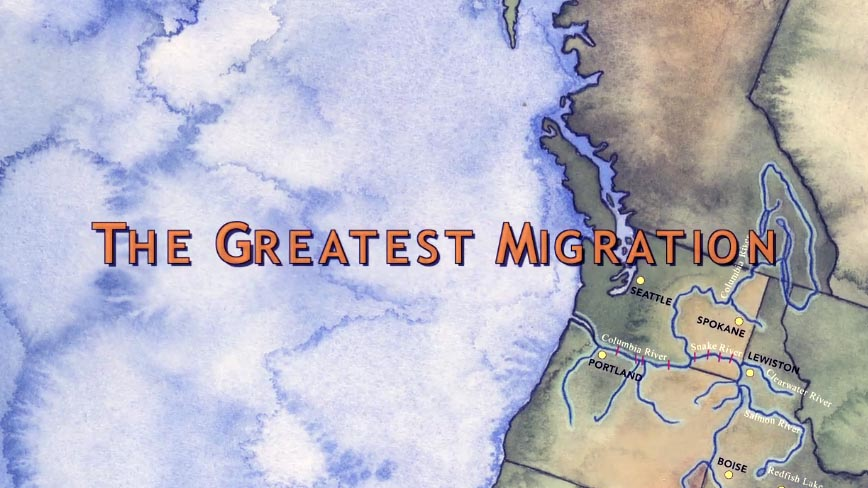 2011 The Greatest Migration 20 min.